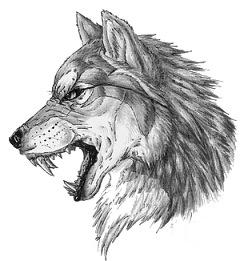 волк тату эскиз екатеринбург